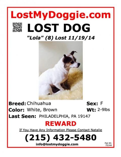 Lost_Dog_Lola